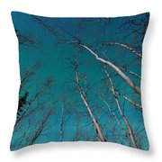 Green Swirls Of Northern Lights Over Boreal Forest Throw Pillow