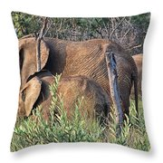 Greener Pastures Throw Pillow