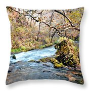 Greer Spring  Throw Pillow