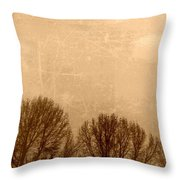 Late Autumn Throw Pillow