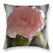 Greeting  Throw Pillow