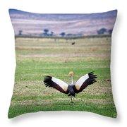 Grey Crowned Crane. The National Bird Of Uganda Throw Pillow