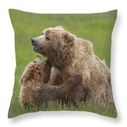 Grizzly Bear Playing With Cub Lake Throw Pillow