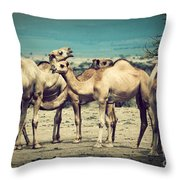 Group Of Camels In Africa Throw Pillow