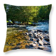 Gull River Throw Pillow