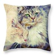 Gutter Kitties Seven Throw Pillow