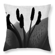 1 H Lily Nectar Drip Bw Throw Pillow