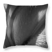 1 H Na Lily Bw Throw Pillow