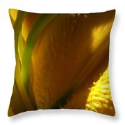 1 H Na Lily Throw Pillow