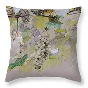 Hanging Thompson Grapes Sultana Throw Pillow