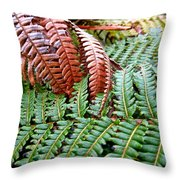 Hapu'u Frond Throw Pillow