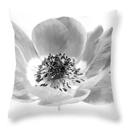 Harmony Scarlet Anemone Throw Pillow