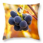 Harvest Gratitude Throw Pillow