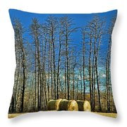 Hay Bails Throw Pillow