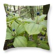Herb Paris Throw Pillow