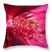 Hibiscus Named Luna Rose Throw Pillow
