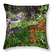 High Country Wildflowers 2 Throw Pillow