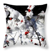Highland Frost Throw Pillow