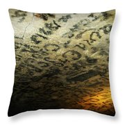 Historic Graphitti  Throw Pillow