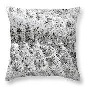 Hoarfrost 14 Throw Pillow