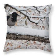 Hooded Crow First Snow Throw Pillow