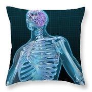 Human Skeleton And Brain, Artwork Throw Pillow