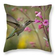 Hummingbird Heaven  Throw Pillow