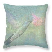 Hummingbird Tune Throw Pillow
