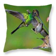 Hummingbirds At Feeder Throw Pillow