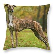 Hungarian Greyhound Throw Pillow