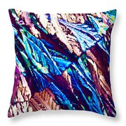 Hydroquinone Crystals In Polarized Light Throw Pillow
