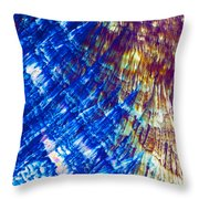 Hydroquinone Microcrystals Color Abstract Art Throw Pillow