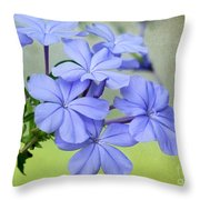 I Love Blue Flowers Throw Pillow