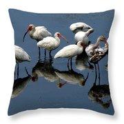 Ibis 10 Throw Pillow
