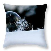 Ice Aged Throw Pillow