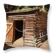 Ice House At The Holzwarth Historic Site Throw Pillow