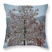 Iced Tree Throw Pillow