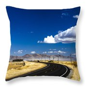 Idaho Street Throw Pillow