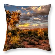 In The Golden Hour  Throw Pillow
