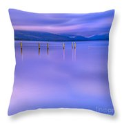 In The Realm Of Giants Throw Pillow