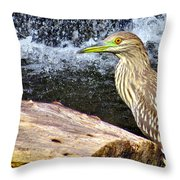 In Threes Throw Pillow