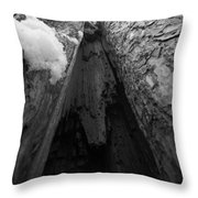 Inner View Throw Pillow