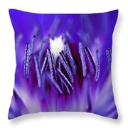 Inside A Flower Throw Pillow