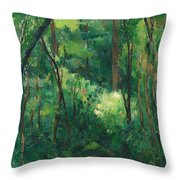 Interior Of A Forest Throw Pillow