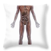 Internal Human Anatomy Throw Pillow