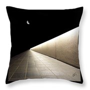 Into The Night I Throw Pillow