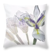 Iris Evolution Throw Pillow
