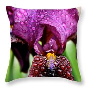 Iris Tongue Throw Pillow