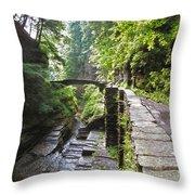 Ithaca Gorge Throw Pillow