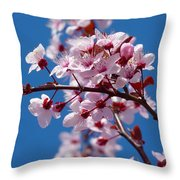 Japanese Cherry Tree Throw Pillow
